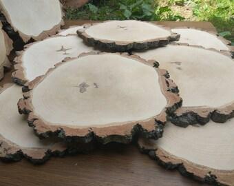 13-14 inch Large Birch Wood Slice,birch wood slice,wood slab,wood coaster,wood platter,Rustic Wedding Decor, Cake Stand, Wedding Centerpiece