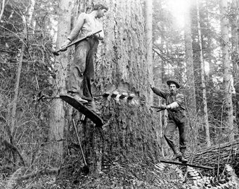 """Two Loggers with Springboards, Oregon Vintage Photograph 8.5"""" x 11"""" Reprint"""