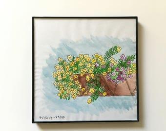 89/100: Flower Box - original framed watercolor illustration