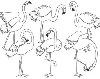 Black and White Flamingo Clipart - Digital Vector Flamingo, Bird, Exotic, Flamingo Clip Art