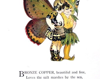 Wanderer Butterfly, Bronze Copper Butterfly - 1914 Antique Book Page - Butterfly Babies, Butterfly Children - 9 x 6