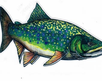 "7"" Brook Trout Decal Sticker"