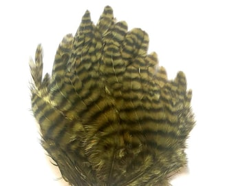 Green Olive Black Striped Grizzly Striped FEATHER PAD for crafting or fly tying Rooster feathers