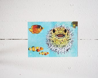 Colorful greetingcard of funny fish (animals, card)