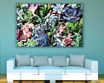 Succulent Canvas Art, wall art canvas, canvas print, nature photography, botanical, cactus