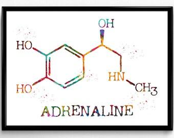 Adrenaline, adrenalin Molecule, Watercolor Print , Symbol, Wall Art, Nerd Art, Science Art, Biology, Chemistry,Decor,Medical Art(1212)