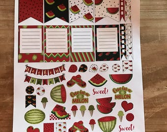 Watermelon planner stickers. Available in pocket / personal planner size or classic or mini happy planner. Planner accessories.