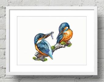 Kingfisher Art Print | Watercolor Kingfisher illustration | Kingfisher | Watercolor print | Home décor | Wildlife illustration | Eisvogel