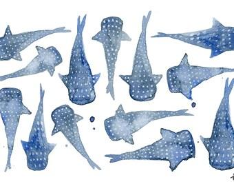 Whale Shark Digital art print - A4 - A5