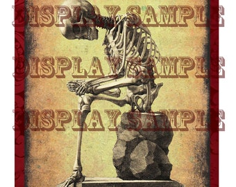 Victorian Anatomical Print - Seated Human Skeleton - A4 Digital Download