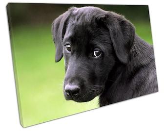 Sad black Puppy Dog Animal pet art Ready to Hang Canvas X1043