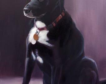 Custom Pet Portrait - Dog Portrait - Pet Painting - Oil Painting - Mixed Breed - Unique Gift