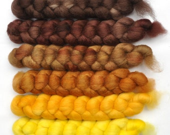 Hand dyed roving -  Blue Faced Leicester (BFL) wool spinning fiber - 6.0 ounces - Toasted Almonds