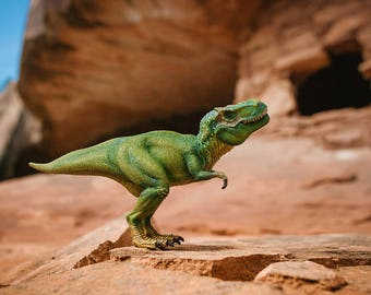 T-Rex Print, Dinosaur Photo, Kids Room Decor, Toddler Room Art, Nursery Decor, Dinosaur Wall Art, T-Rex Dinosaur Art Print, Tyrannosaurus