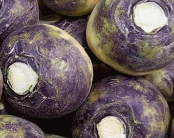 American Purple Top Rutabaga Heirloom Garden Seeds Non-GMO 200+ Seeds Swede Cool-weather Crop Vitamin-rich Very Tasty Top Quality Gardening