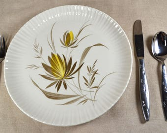 Harker China Forest Flower Dinner Plates, Set of Two Translucent China Dishes, Brown and Yellow Flowers and Leaves, 10 Inch Coupe Plates