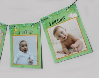 Jungle Birthday Monthly Photo banner for 4x4 photos, Safari First birthday photo banner, First birthday photo banner, jungle, READY TO SHIP