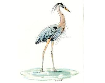 Blue Heron Bird Pen & Ink Watercolor Illustration Drawing Beach Decor Gift Idea Bird Watchers Lake House Marsh Birds Gray Blue Aqua Black