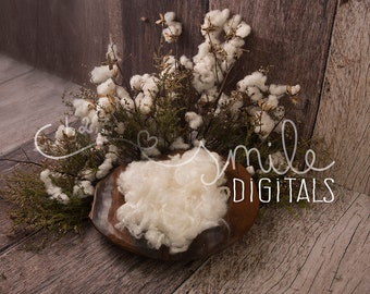 Set of White Fresh Flower Digital Backdrop
