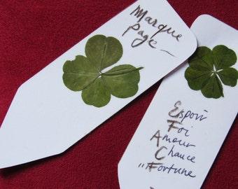 a brand page ORIGINAL with 1 5 leaf clover + a 4 leaf clover