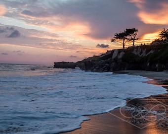 Santa Cruz Beach-Print