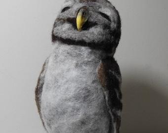Little owl. Needle felted