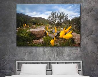 Fine art landscape photography - Amongst Friends - original home decor wall art