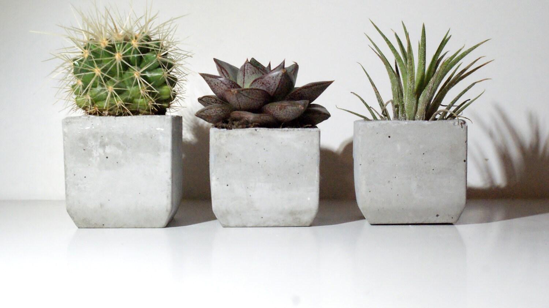 Set of 3 Concrete planters/air plant holder /Succulent planter