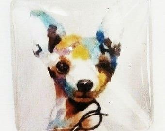 cabochon square 25mm, pop art chihuhua