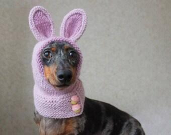 KNITTING PATTERN, Dog Hat, Mini Dachshund, Bunny Hood, Pet Costume, Pet Clothes, Animal Hood, Bunny Rabbit Ears, Pink, Doxie, Wiener Dog