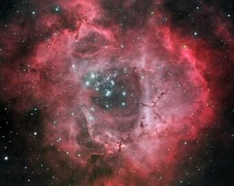 Rosette Nebula (4x6, 8.5x11 or 13x19 print)