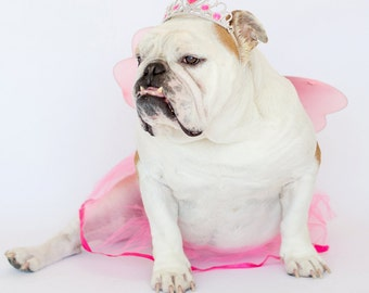 Happy Birthday Princess English Bulldog Card, Fine Art Photography Print, Purrfect Pawtrait Pet Photography, Animal Photography