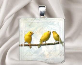 3 Little Canaries - Square Glass Tile Pendant Necklace