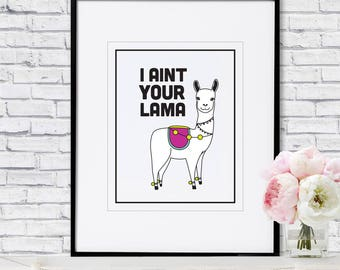 I Aint Your Lama - Poster