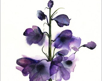 Delphinium watercolor PRINT- large 11 x 17