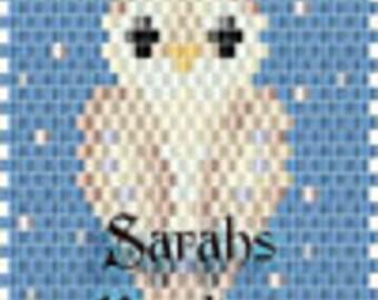 Barn Owl Pen Cover id 15562