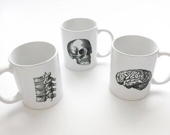 Anatomy coffee Mugs cups halloween skull brain physician assistant male nurse medical student gifts graduation biology goth spine dorm decor