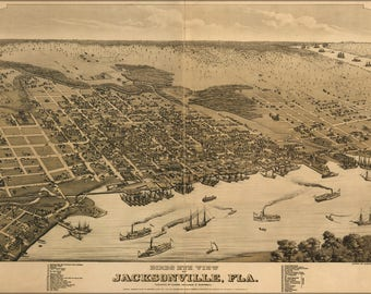 Poster, Many Sizes Available; Birds Eye View Of Jacksonville, Florida 1876