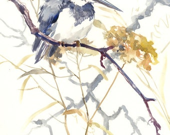 Kingfisher Bird Artwork Belted Kingfisher, original painting watercolor,  in bird artwork bird art, gray gray olive green sage