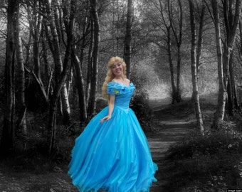 Cinderella Adult Costume. 2015 movie dress.