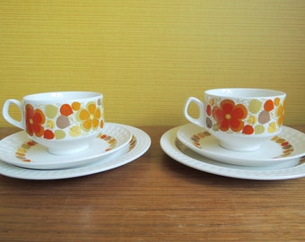 Pontesa Pair of Cups and Saucers and Cake Dish / Spanish Vintage / 60s / Orange Flower / Daisy / The Young Range / Ironstone