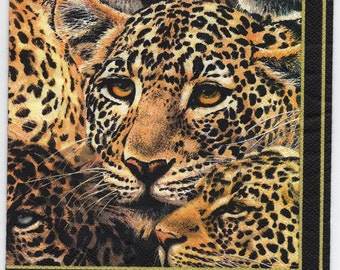Decoupage Napkins | Mysterious Cheetahs  | Animal Napkins | Wildlife Napkins | Africa Napkins| Paper Napkins for Decoupage