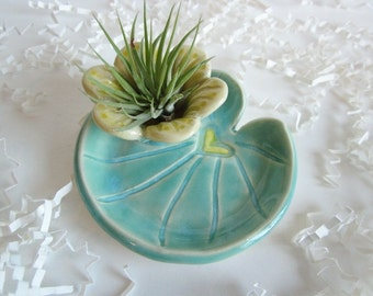 Lily pad Air plant planter, air plant holder, Cubicle decor, ceramic ring holder, air planter, Desk decor