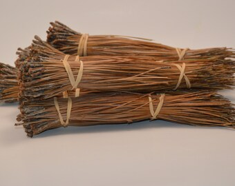 1 Pound of Colorado Pine Needles