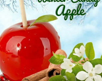 Winter Candy Apple Candle/Bath/Body Fragrance Oil