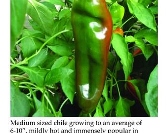 Anaheim Pepper Plant Tag Heirloom Hot Super Hot Sweet Hybrid Pepper Picture Garden Marker