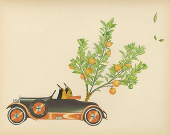 Julius and Clementine.  Original collage by Vivienne Strauss.