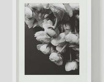 Black and White Ranunculus Print, Minimalist, Black and White Wall Art, Printables, Instant Download, Minimalist Print, Ranunculus, Flower
