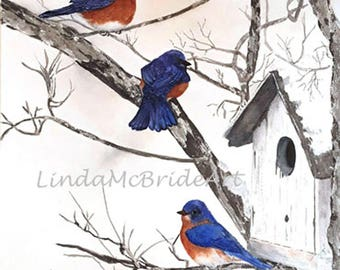 Bluebirds in Snow 3.5x5 Blank Notecards with Envelope