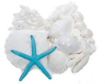 Shell, Coral and Starfish decorative pack